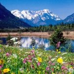 16 Best Mountains in Germany