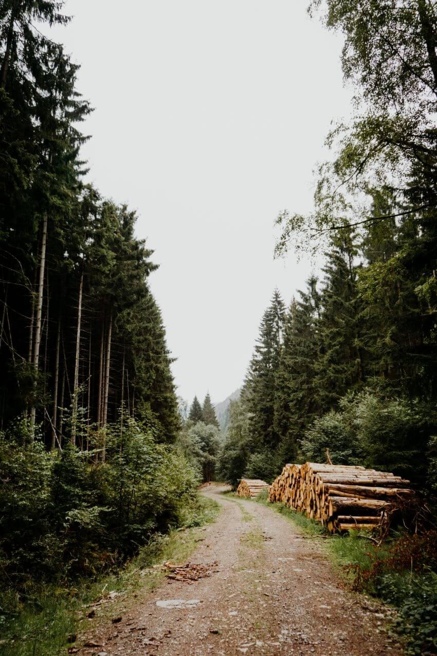 Harz National Park, Germany