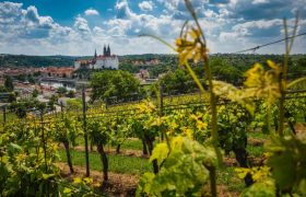 Saxony Germany | things to do in lower Saxony