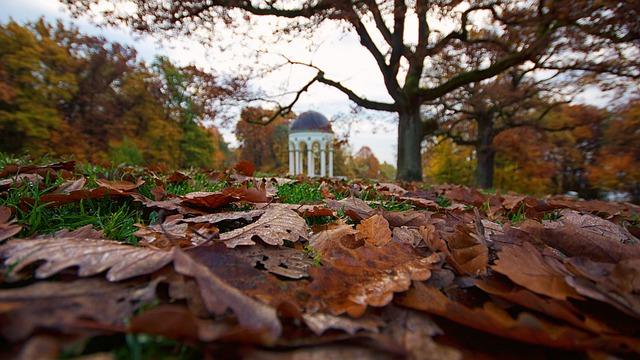 Neroberg Autumn